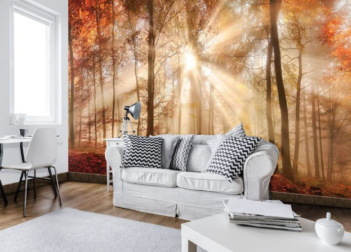 Giant size wall mural wallpapers Green forest| Homewallmurals Shop